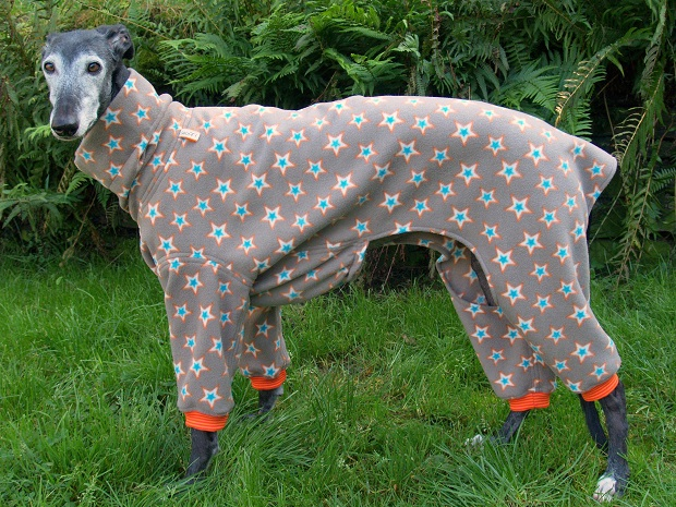 Fleece-Jumper für Galgos, Greys und Co.